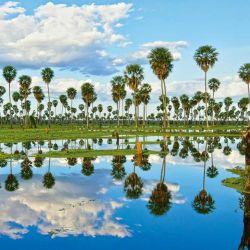 El bañado La Estrella es el segundo humedal más grande de la Argentina.