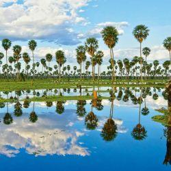 El Bañado La Estrella es una de las nuevas siete maravillas naturales de la Argentina.