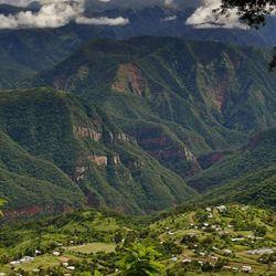 Las Yungas muestran otra cara de Jujuy. Selva viva como en el Parque Nacional Calilegua con flora y fauna nativas y viejos senderos incas.