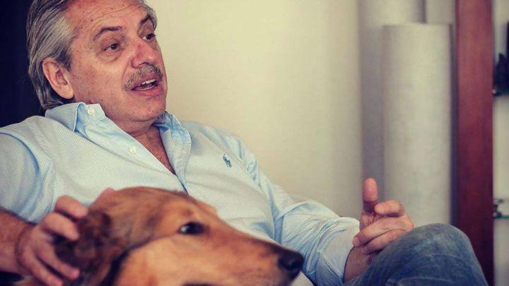 Conocé a Dylan, el perro influencer de Alberto Fernández