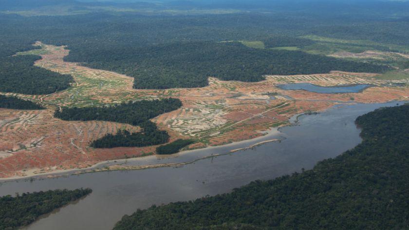 Bolsonaro atiza fuego sobre deforestación en Amazonia