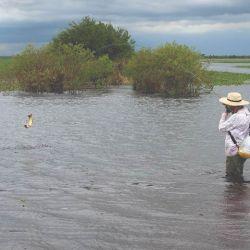 Una linda pelea en el Paraná Inferior.