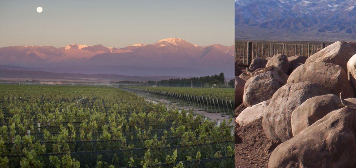 ¿Esta de moda la mineralidad en los vinos argentinos?