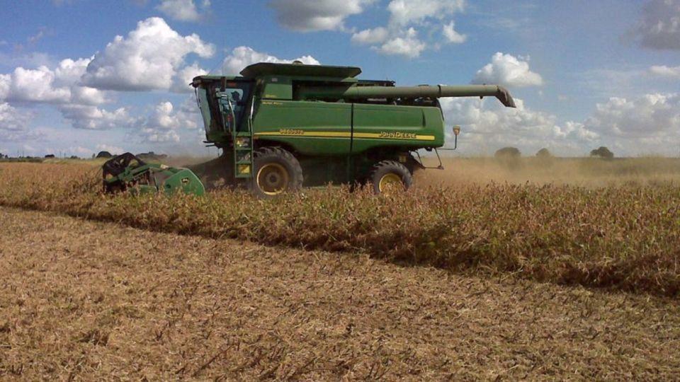 La baja de precios agrícolas hizo caer las retenciones.