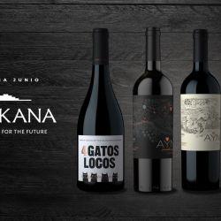 Los mejores vinos de CHAKANA en la CAJA DELIRIO de este mes