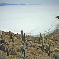 Tunupa desde Isla Inca Huasi.