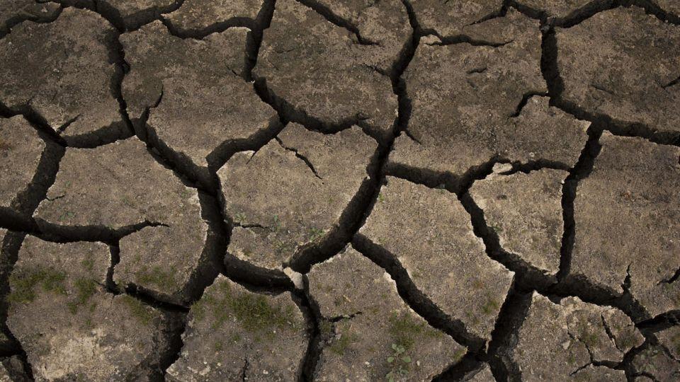 Calentamiento global consecuencias políticas