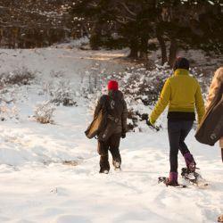 Mediante un trekking se puede llegar a los circuitos turísticos de otra manera, con la posibilidad de avistar algún zorro o castor