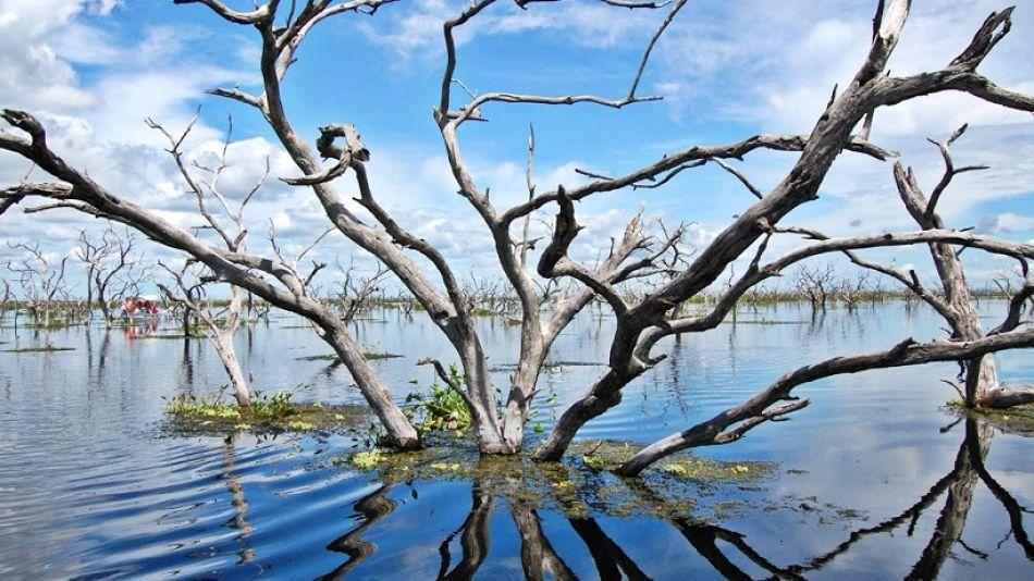 El Bañado La Estrella posee riquezas de flora y fauna de gran importancia.
