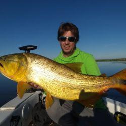 Uno de los lindos pescados que superaron los 4,500 kg. Y no fue el único.