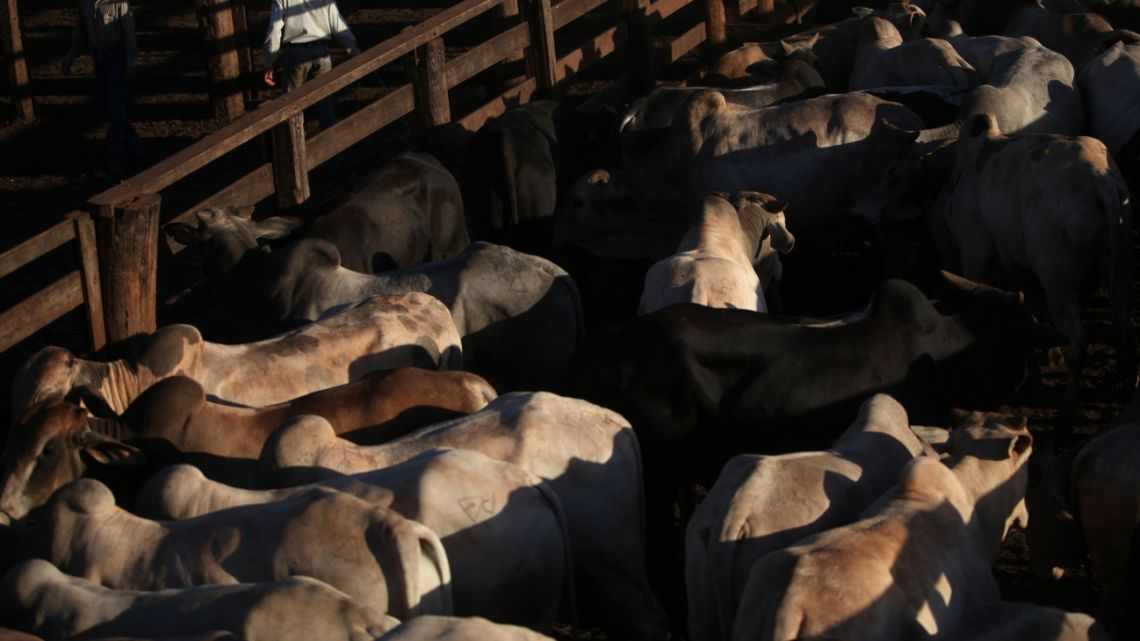 Irish farming groups are particularly concerned about a possible influx of Brazilian beef into the EU.