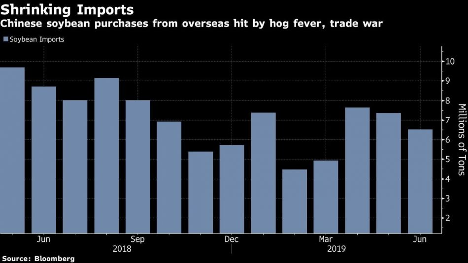 Chinese soybean purchases from overseas hit by hog fever, trade war