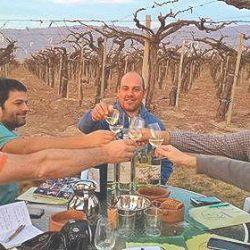 El torrontés es el vino característico de La Rioja y la única uva 100 % argentina
