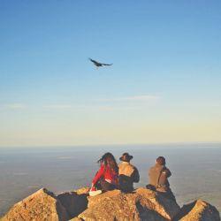 Observar las especies autóctonas en la Quebrada de los Cóndores marca recuerdos imborrables.
