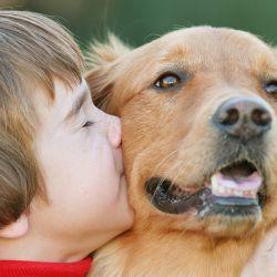 El amor que hay entre animales y personas puede generar enfermedades.