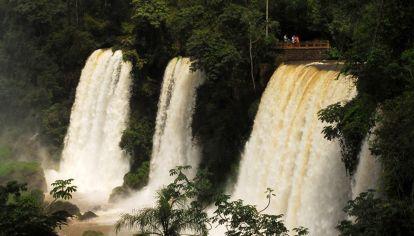 Las impresionantes Cataratas del Iguazú, Misiones.