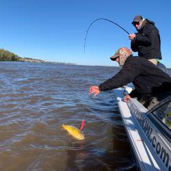 El frío no hizo mermar la pesca, al contrario, nos regaló un día bárbaro con pesca de cantidad y calidad.