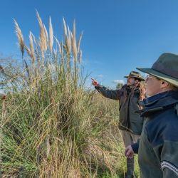 Desde el 20 de agosto y hasta el 2 de septiembre estará abierta la inscripción a un nuevo Curso de Formación para Guardaparques Nacionales, que buscará cubrir sesenta vacantes para cumplir funciones en distintas áreas protegidas del país..
