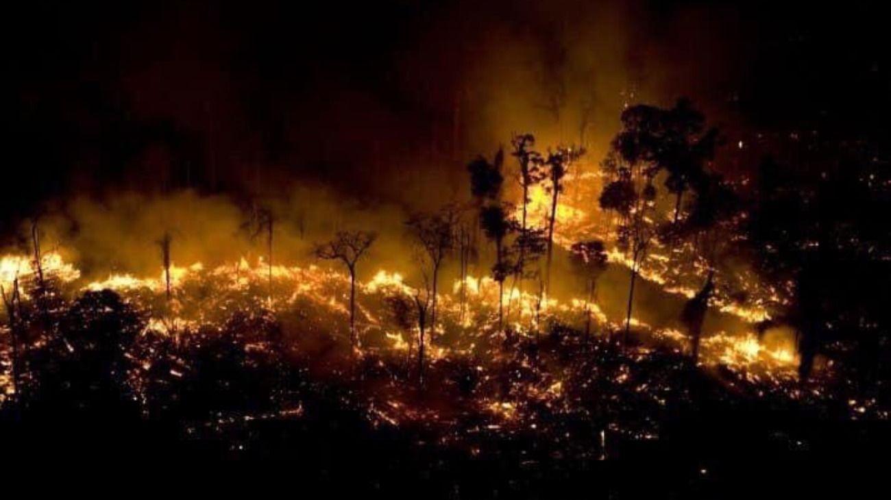 Los incendios en la selva de Brasil crecieron un 83% y Bolsonaro culpa a las ONG