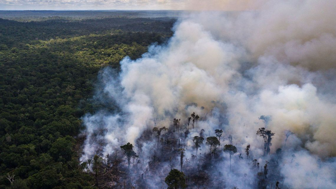 Trees in the Amazon burn amidst international outcry against the environmental policies of Jair Bolsonaro.