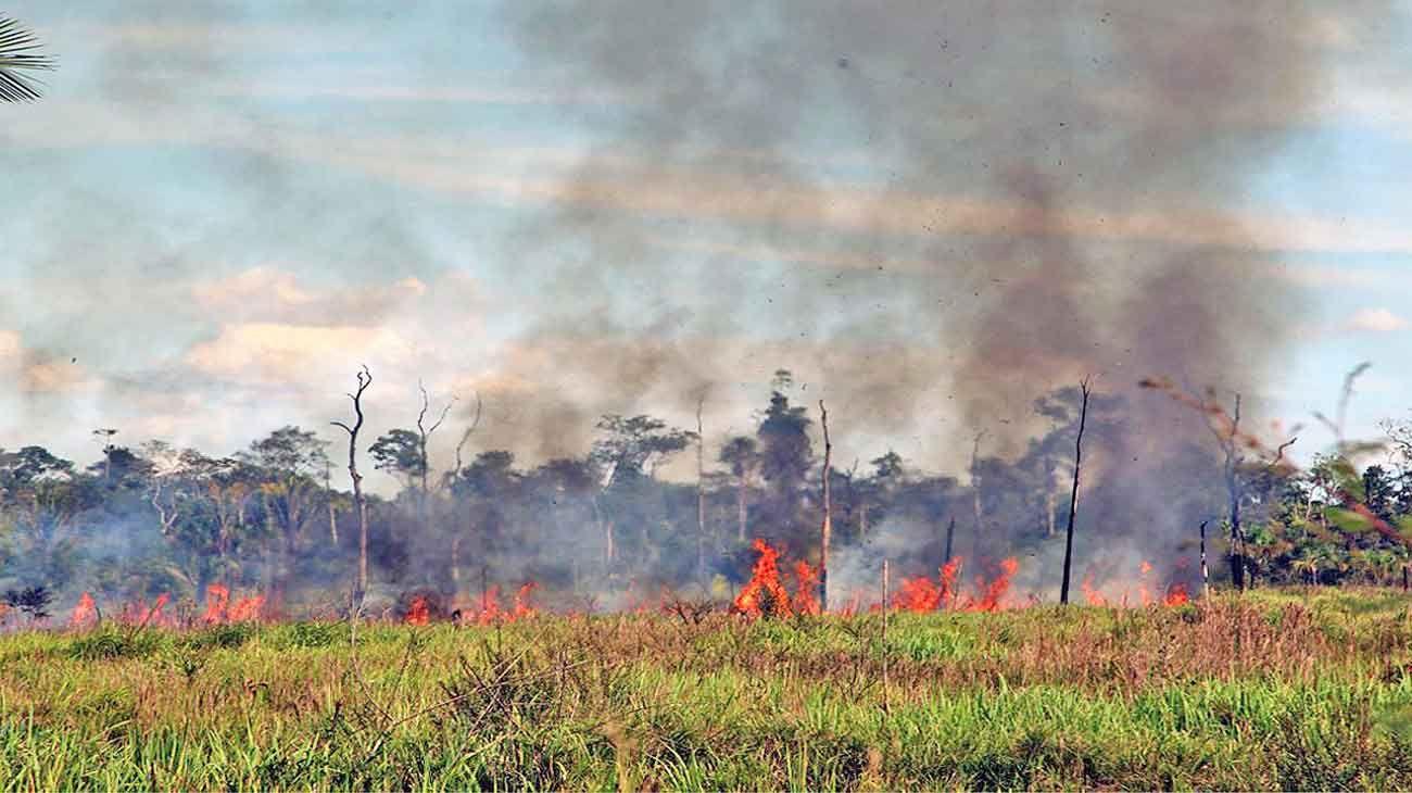 Fuego. Brasil exhibe un 84% de aumento de incendios forestales con respecto del año pasado. Imagen satélital de la NASA muestra el manto de humo generado.