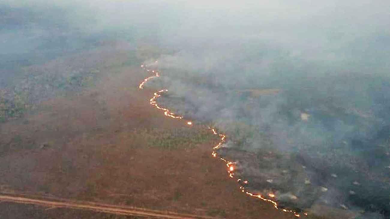 Amazonas: la UE se enfrenta a Bolsonaro por los incendios