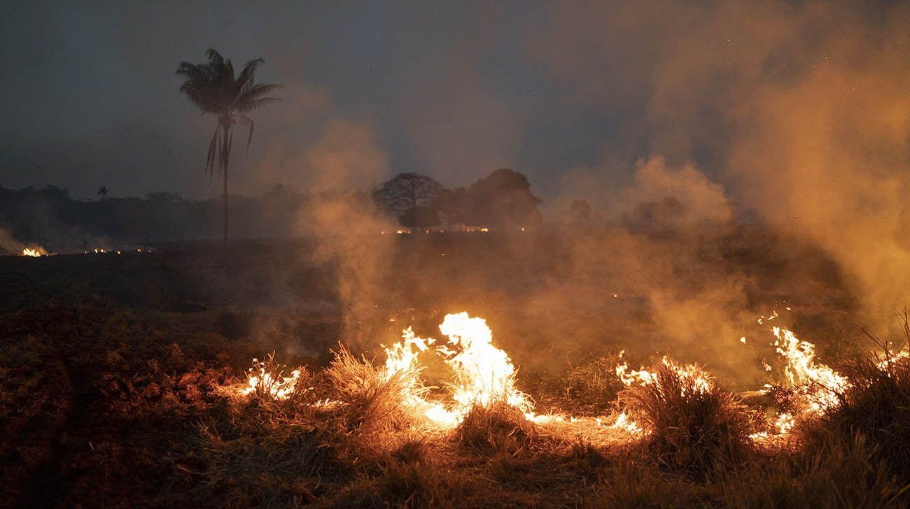 Incendio de amazonas