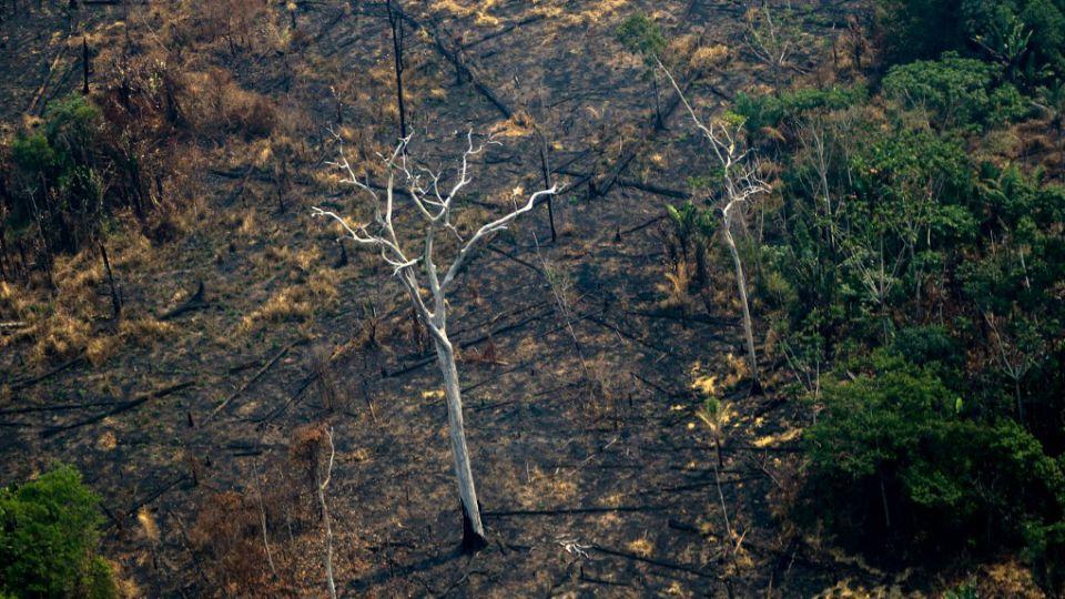 Incendios en la Amazonía (Brasil) el 25 de agosto de 2019.