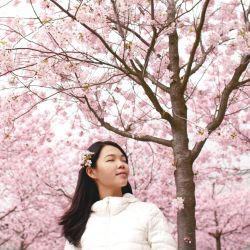 Rutinas de belleza coreanas, las más buscadas