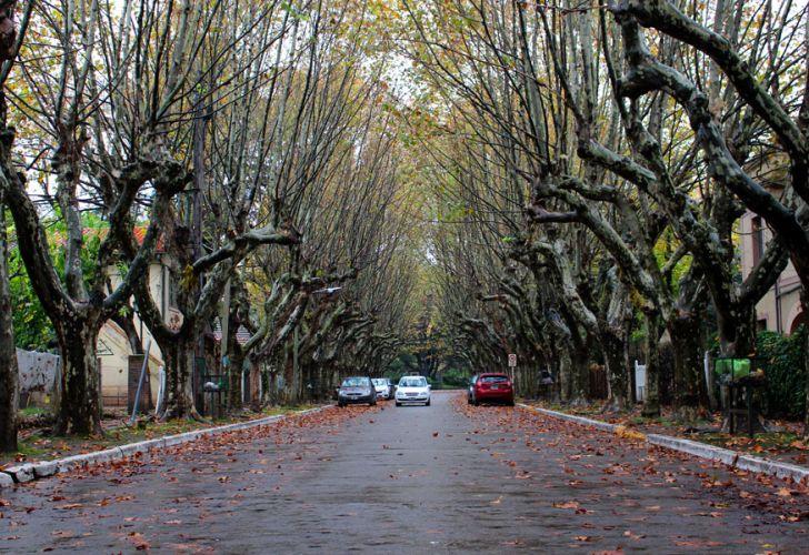 Parque Cervecero y La Villa Argentina 20190830