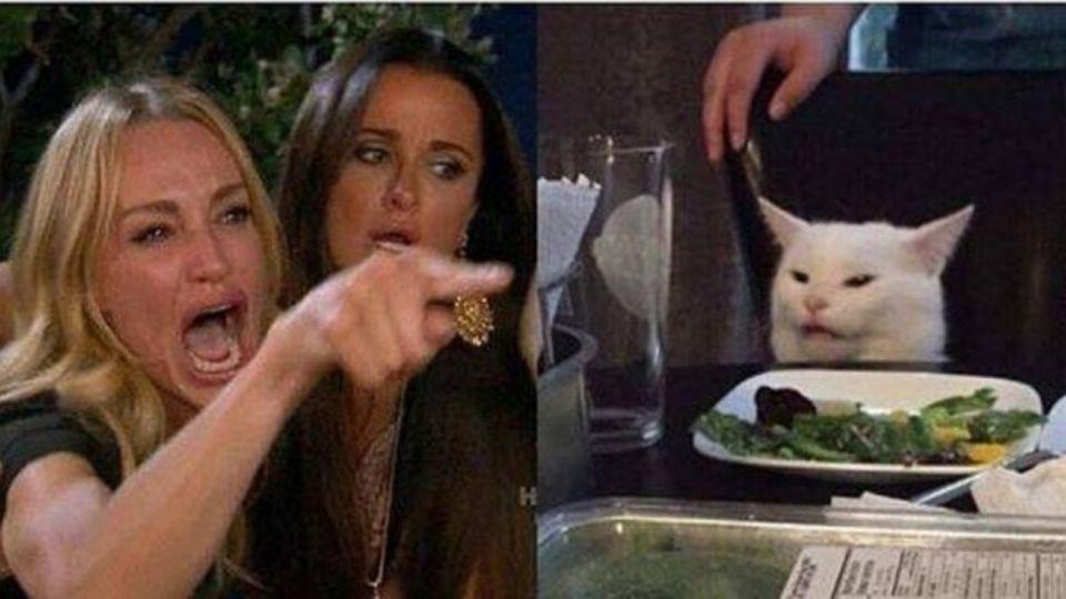 La Foto Viral De El Gato En La Mesa Que Desató Una Ola De Memes Perfil