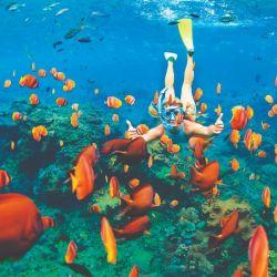 Bonaire, Antillas y Caribe Sur son algunos de los puertos que tocan los cruceros de Pullmantur.