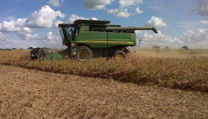 Trituradoras de soja argentinas, más cerca de exportar a China.