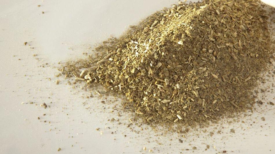 Aumento en la yerba mate procesada y en consumo interno en los primeros siete meses del año.