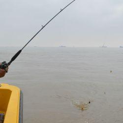 Utilizamos fueron cañas de 2 m, reeles frontales y rotativos pueden ser cargados con multifilamento o nailon a elección del pescador, líneas básicas con un máximo de dos anzuelos, y plomos de 20 a 80 g dependiendo de la correntada del momento.