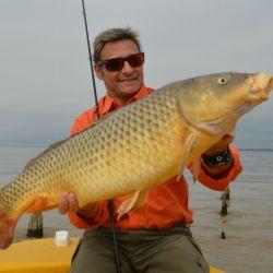 La pesca de carpas y bogas tiene su particularidad, ya que la maniobra de amarre se complica en el caso de que el río se encuentre muy picado.
