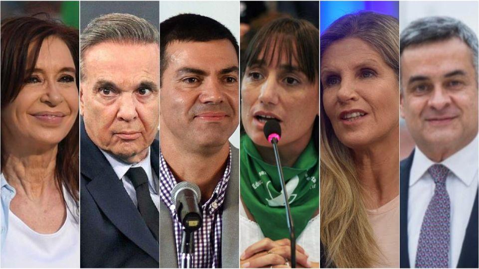 Cristina, Pichetto, Urtubey, Del Plá, Rosales y Hotton, los candidatos a vicepresidente.