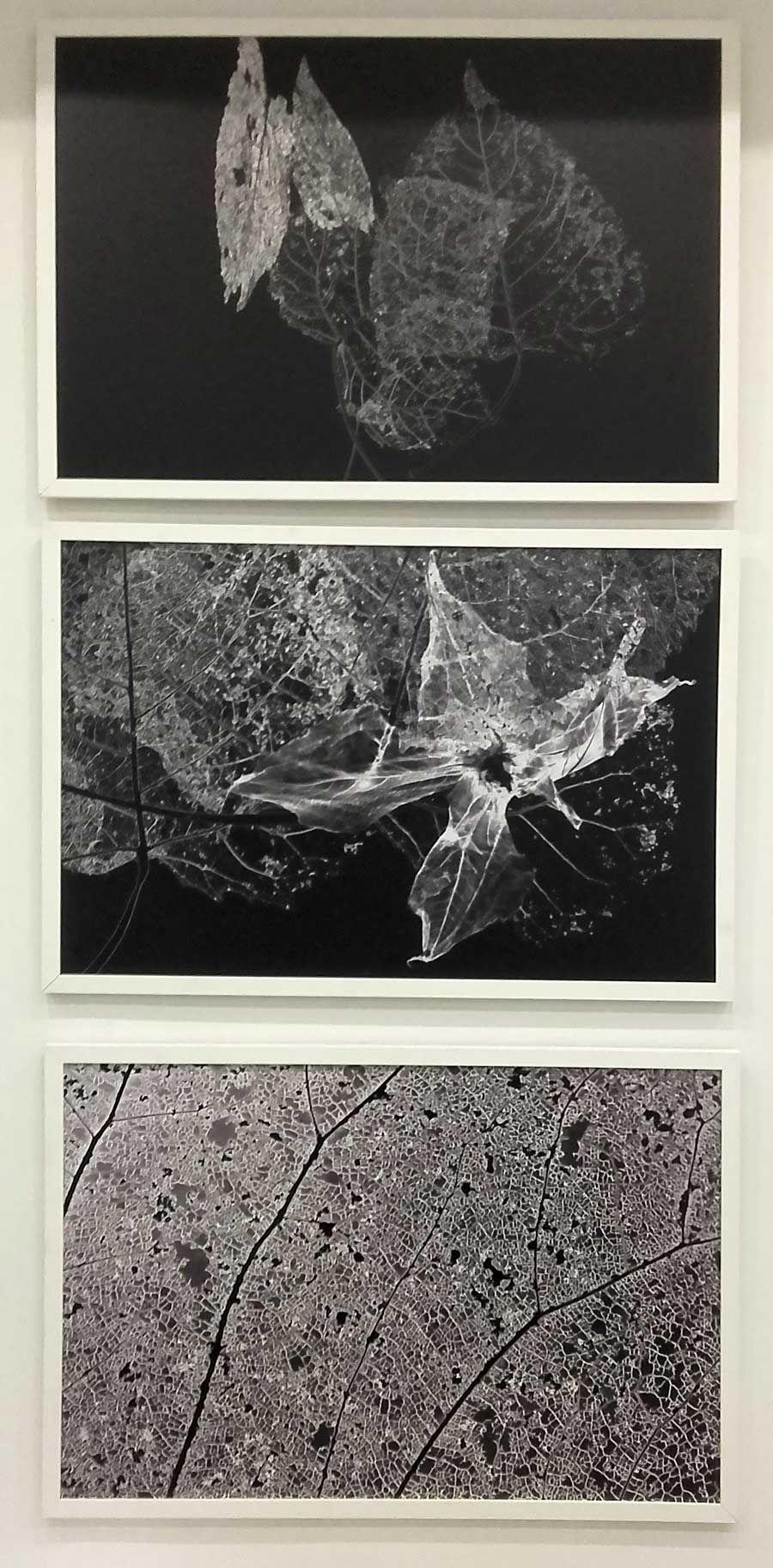 Bresson Gallery - Black
