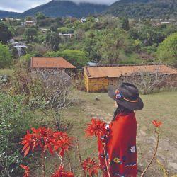 El jardín del hospedaje Tía Carola.