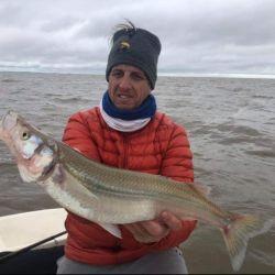 Terminamos el día con un saldo de 35 pescados, de los cuales 20 superaban el kilo y dos el kilo y medio.