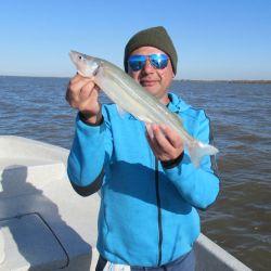 Comenzamos a tener piques de esos lindos matungos tan característicos de nuestro Río de la Plata en la zona sur.