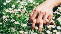 Primavera: Más luz y más sexo
