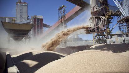 China habilitó las primeras siete plantas argentinas para exportar harina de soja.