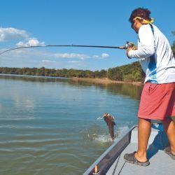 Aguas claras: bajan serpenteantes hacia el río principal. Lo que más se pesca son trairones a la vista.
