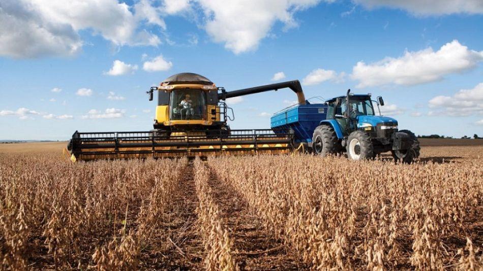 Industria del maíz.