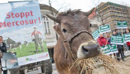 Presiones. En Europa se conjugan el rechazo de agricultores que temen la competencia externa y el del movimiento ecologista que exige altos estándares de calidad medioambiental.