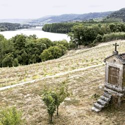 Orense, un paseo por el paraíso gallego