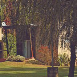 El perfil contemplativo de Cabañas del Espera incluye bancos a la sombra de sauces llorones frente al río.