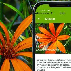 La herramienta digital se puede descargar de manera gratuita en dispositivos móviles tanto para los sistemas Android como iOS a través de argentinanatural.org.ar.