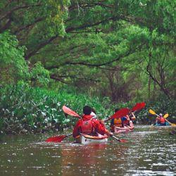 El kayak es la embarcación que ofrece mayor versatilidad y cercanía con las entrañas acuáticas.